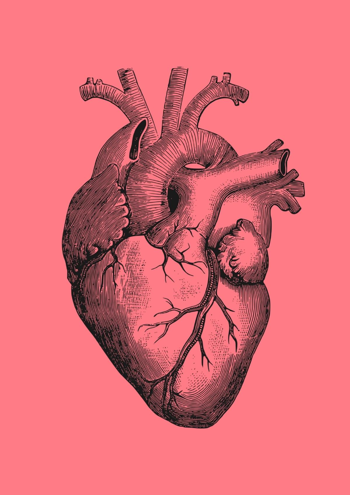 The_Heart_of_Yoga.jpg
